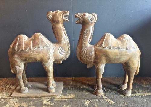 PAIR OF ANTIQUE CHINESE CARVED WOOD CAMELS