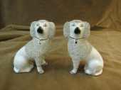 Staffordshire Poodles